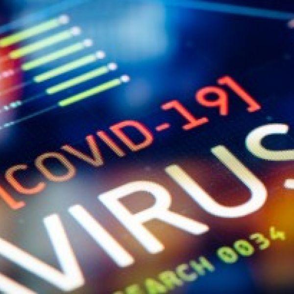 COVID website dashboard stock