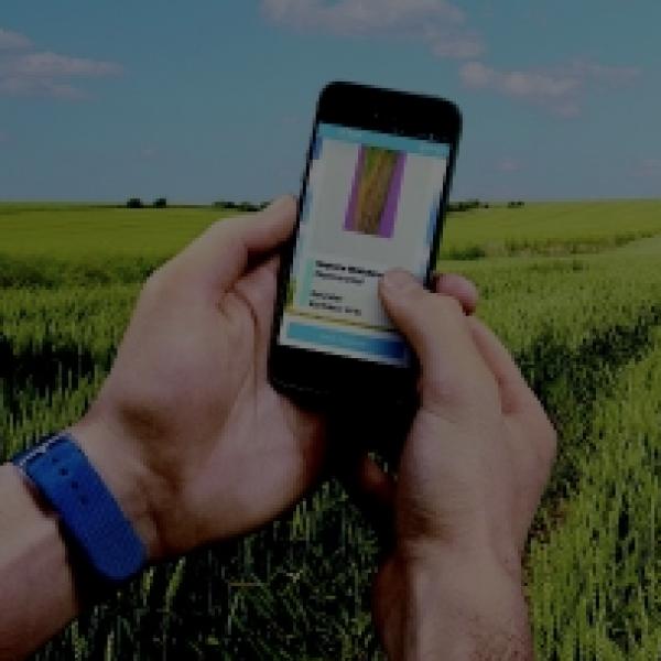 using smartphones in the growing field